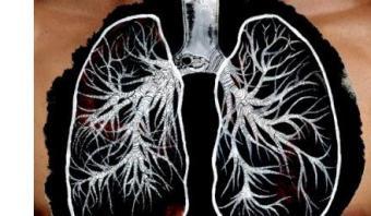 На какие органы и как влияет курение