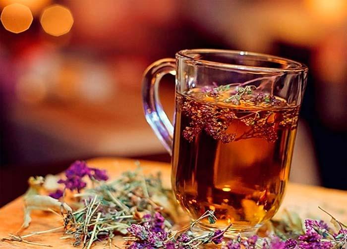 Отвар тимьяна от алкоголизма