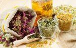 Травы для вашего иммунитета