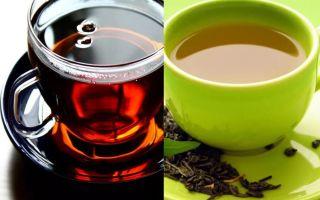 Полезнее черный или зеленый чай – разбираемся детально