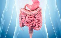 Чтобы похудеть стоит очистить кишечник: способы и правила