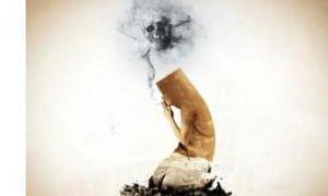 Сколько человек умирает от курения?