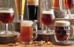 Фильтрованное и нефильтрованное пиво: в чем разница и что лучше