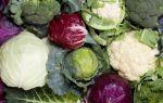 Семь продуктов для уменьшения аппетита