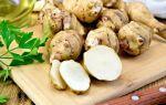Земляная груша: необычный, но полезный корнеплод