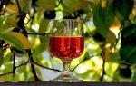 Барбарисовая настойка: варианты напитков на разных основах
