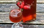 Вино из шиповника: польза и способы приготовления