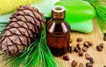 Кедровая настойка: ароматное лекарство от всех болезней