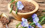 Польза льна для желудка и способы применения семени