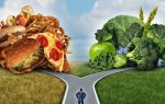 8 мифов о правильном питании: мы все делаем неверно
