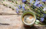 Квас из цикория: рецепты и польза напитка