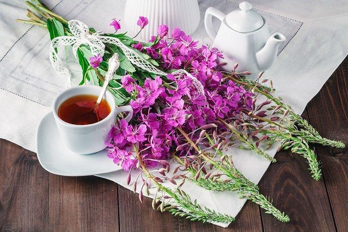 иван-чай напиток