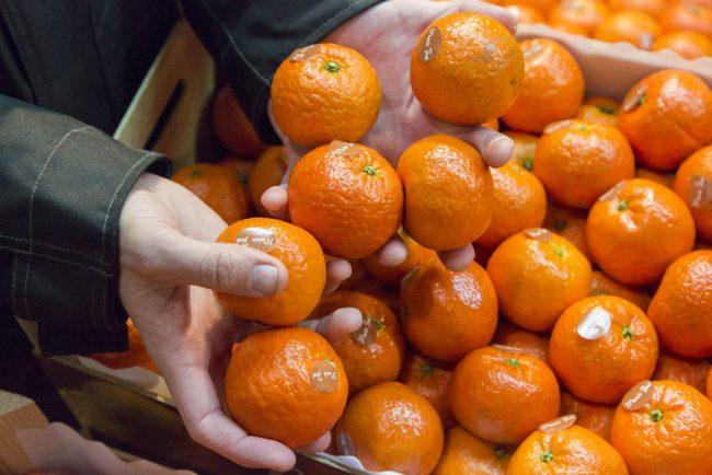 Вред и польза мандаринов