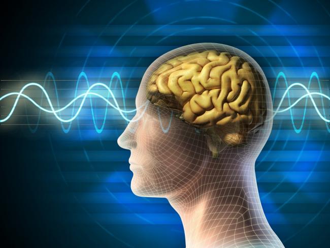 Мозгу необходим комфорт: 5 советов для активной работы мозга