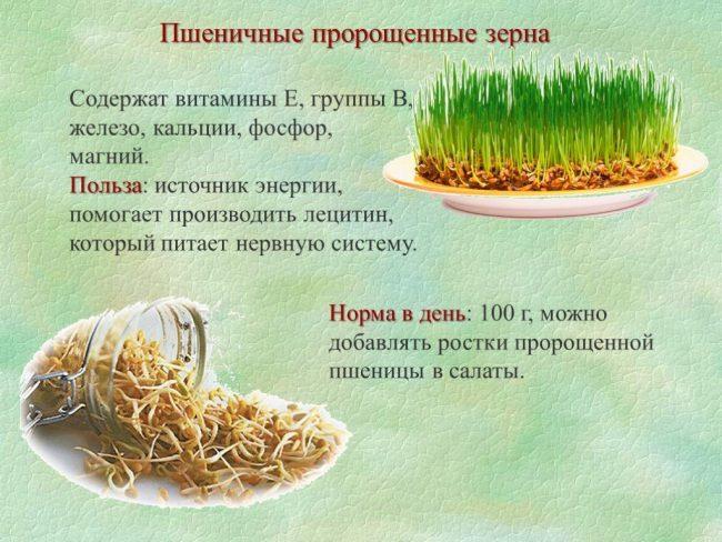 Проросшие семена: как их лучше приготовить, чтобы получить пользу, а не вред