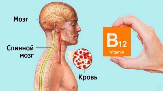 Как понять что организму не хватает B12 - что это за витамин и как его восполнить
