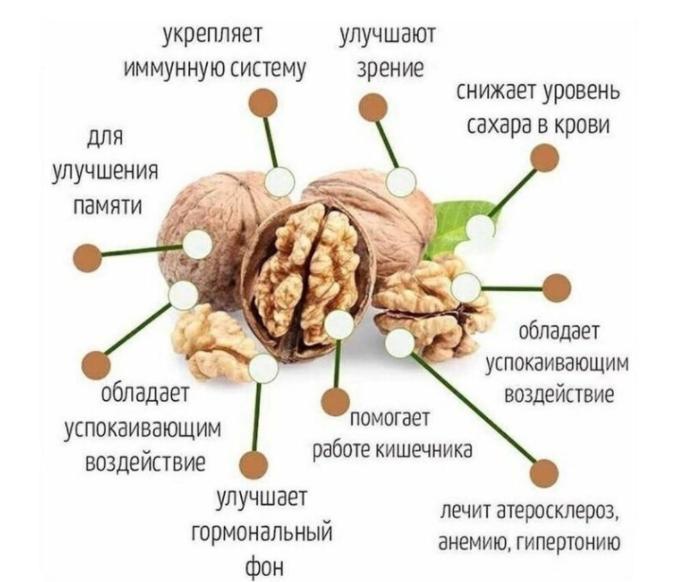 10 причин есть грецкие орехи каждый день, о которых не все знают