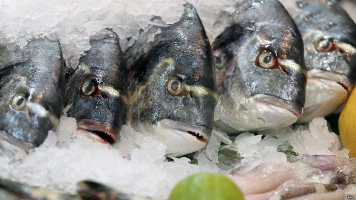 Не вся рыба полезна для организма: 5 советов, как выбрать нужный продукт